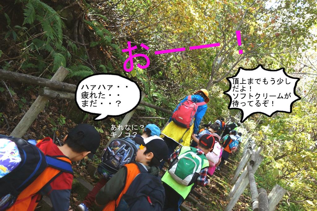 全長600M程の登り道